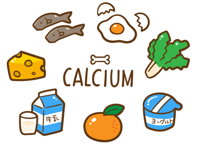カルシウムが多く含まれる食材
